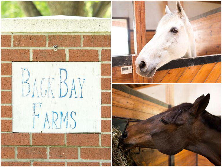 Back Bay Farms Wedding Virginia Beach Photographer